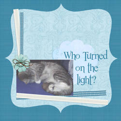 Who Turned on the Light?