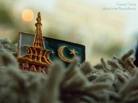 Pakistan Badge # 1