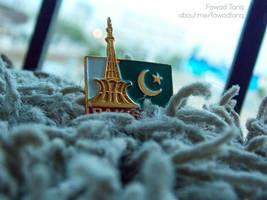 Pakistan Badge # 2