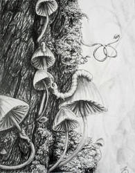 Elephantmosquitolarva