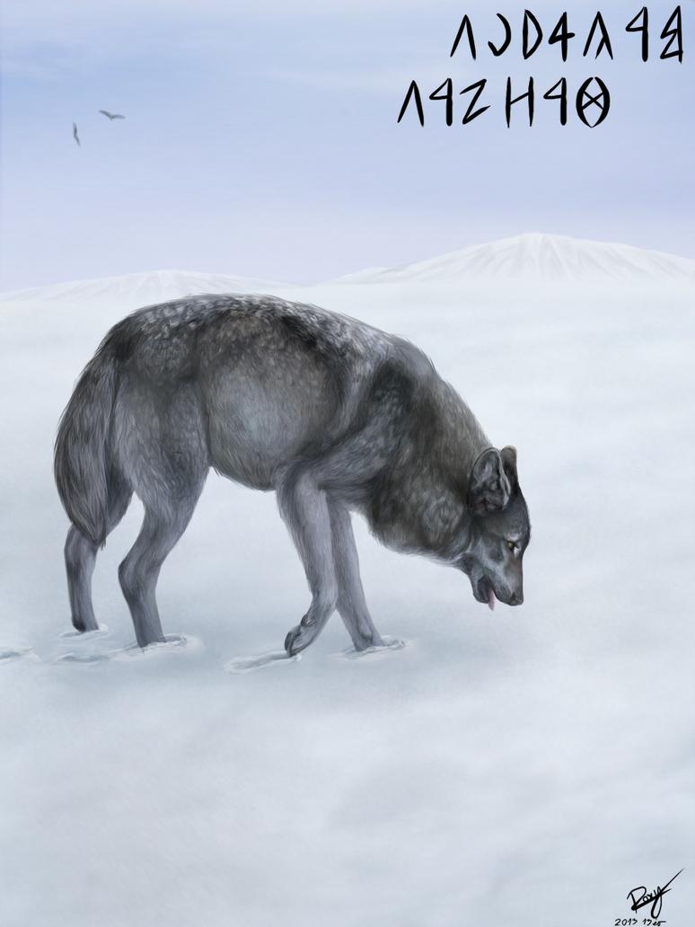 Wolf by Kiuuki