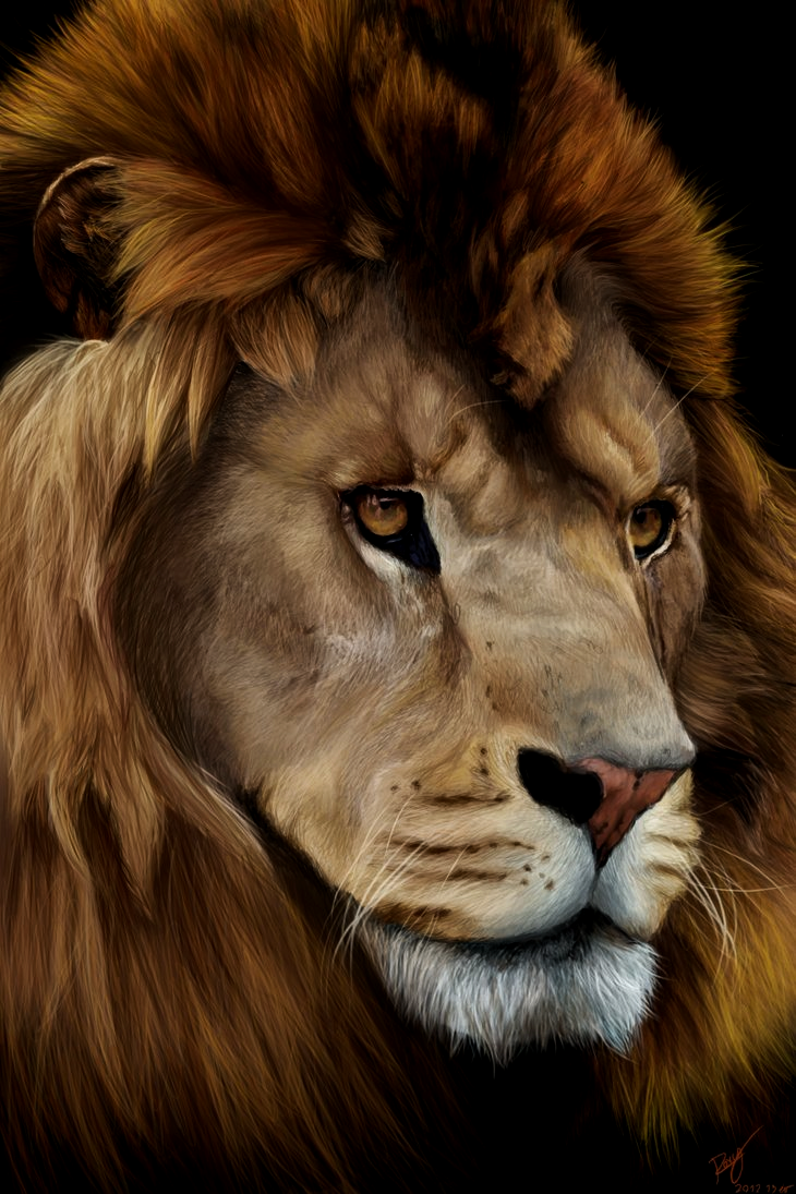 Lion by Kiuuki