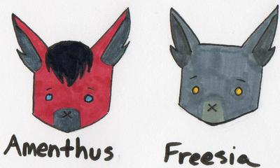 Amenthus + Freesia