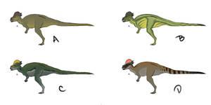 Pachycephalosaurus concept colors.