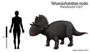 Yehuecauhceratops mudei by VenturaSalas