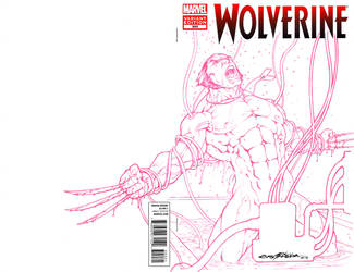 Wolverine by viskratos