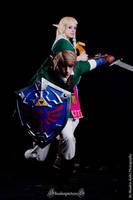 Hylia's Chosen Hero by Narayu