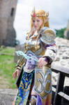 To protect Hyrule !