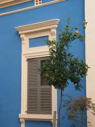 Spain T66 Lemon tree by Gwathiell