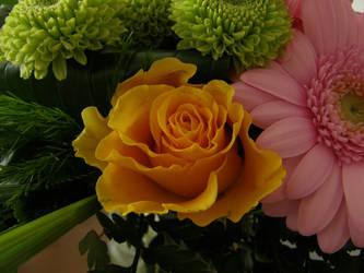Flowers by Gwathiell