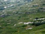 Spain W9 Green hills