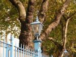 London 5 Blue Lamp still-life