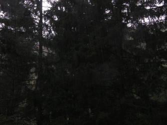 Rain by Gwathiell
