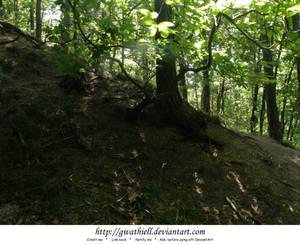 Mushrooms - Fairy tree