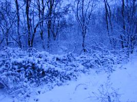 Winter Scene 06 by Gwathiell