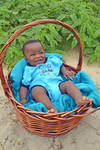 Baby Blue in basket by Elsapret