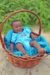 Baby Blue in basket