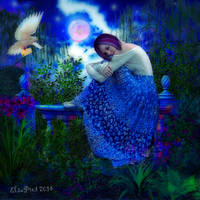 Love letter @ night by Elsapret