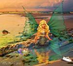 Sea Fairy @ Low Tide