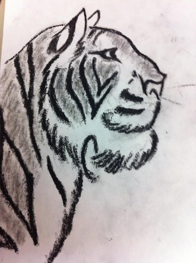 Black And White Tiger Sketch