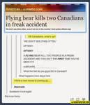 Flying bears...