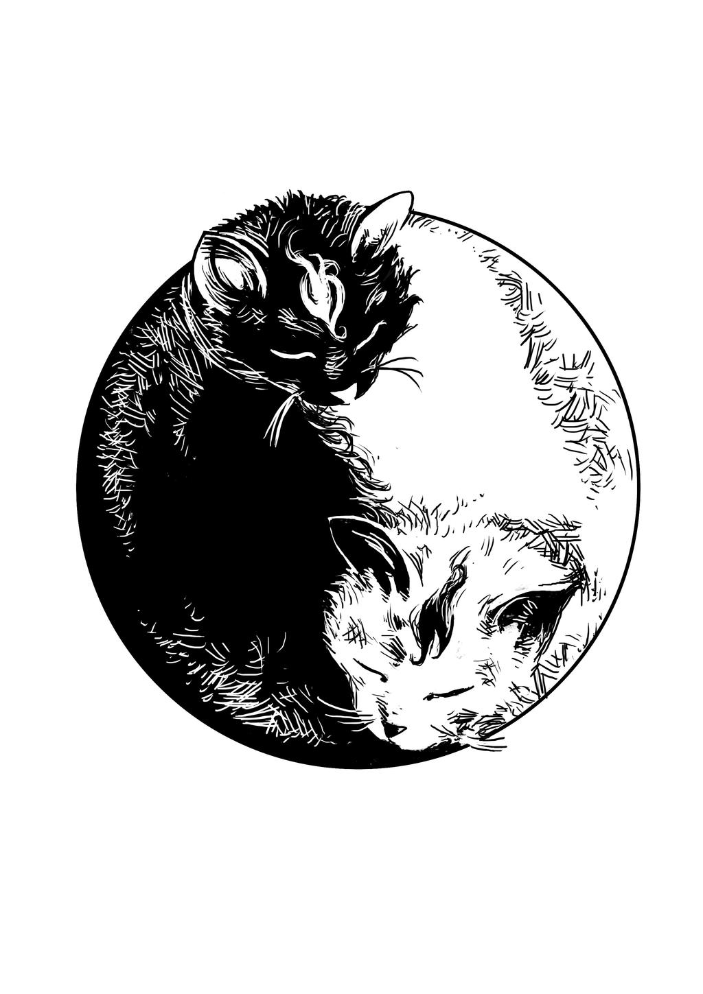 Yin Yang Cats By Steff00 On Deviantart