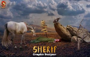 sherif108's Profile Picture