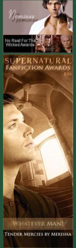 Supernatural Fanfiction Awards