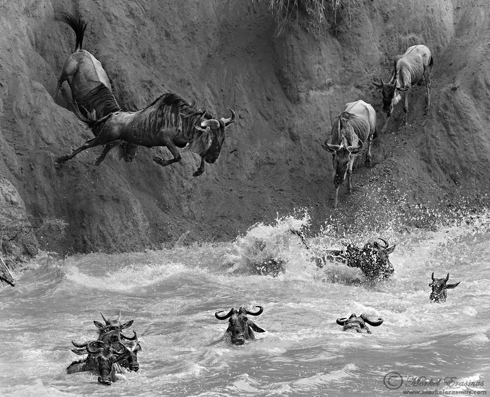 Jumpers by MorkelErasmus