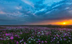 Sunset over the Cosmos by MorkelErasmus
