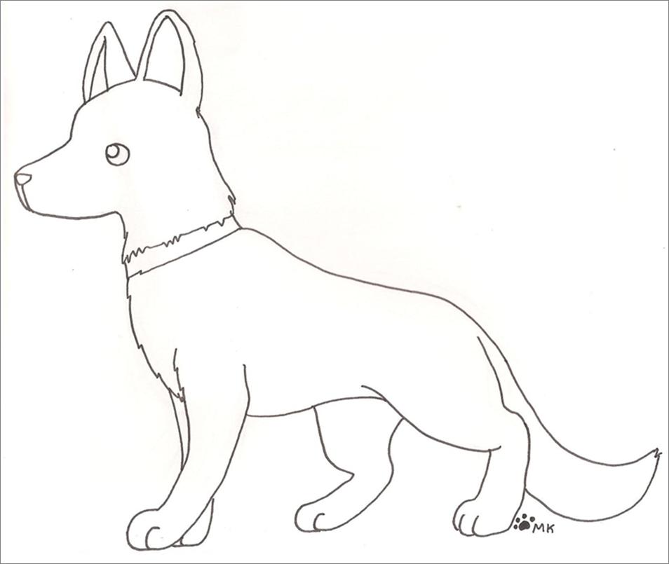 how to draw a german shepherd head