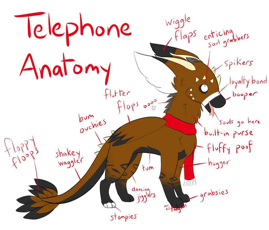 Telephone Anatomy By Fangs211 On Deviantart