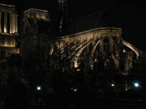Notre-dame behind trees