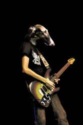 Guithound id