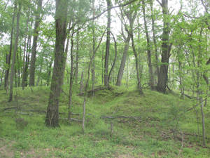 Leeslyvania State Park Stock 31