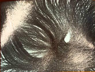 20160223 Spirit Filtered by Thyzor