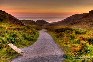 Pathway to Kynance by Shzphoto