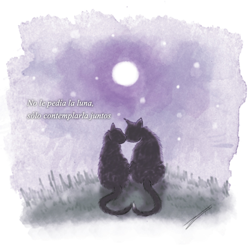 Cats Moon by luftdrache