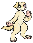 Lab/Mutt for BuggiMoo