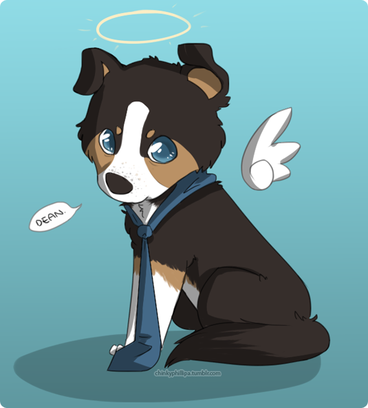 Castiel puppy by thelilaro
