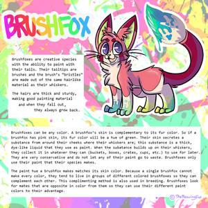 OPEN SPECIES : Brushfox