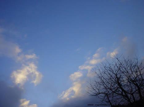 X-Mas day sky shot IV