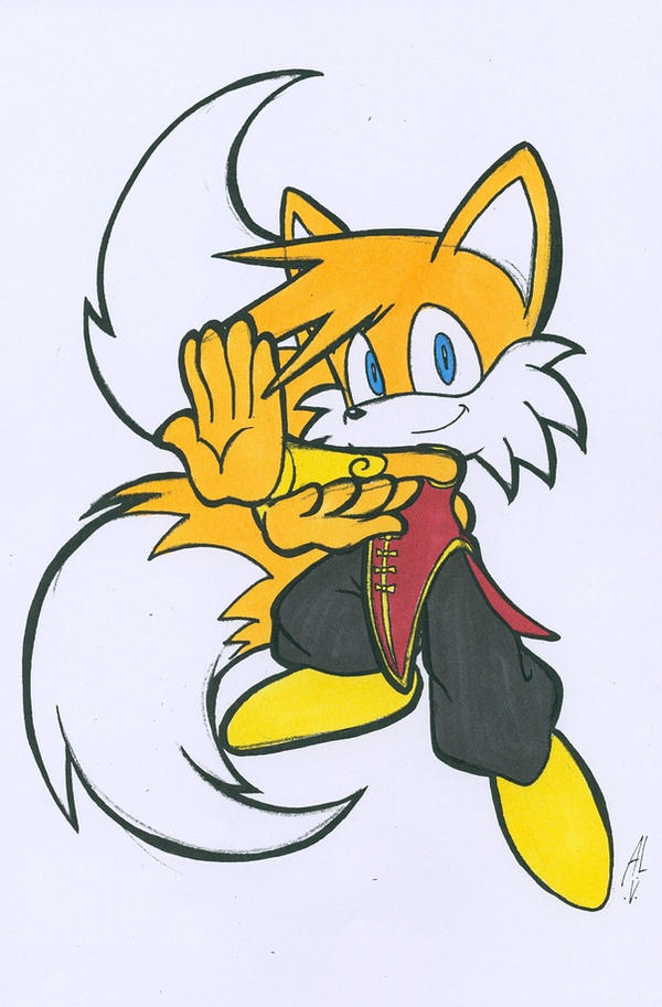 Clichés de Tails  - Page 16 STREET_FIGHTER_TAILS_by_WhiteFox89