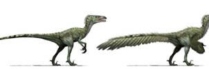 Archeroraptor photomanipulation