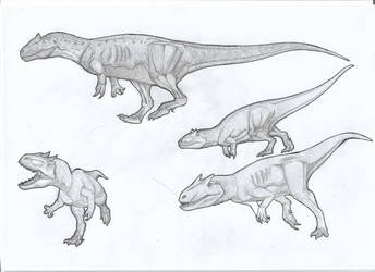 Carnosaurian sketches by kingrexy