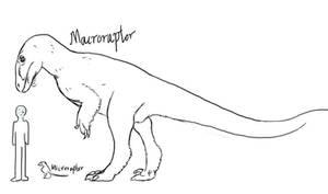 Microraptor? Macroraptor!