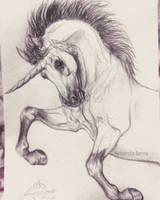 Unicorn by AmanndaSierra