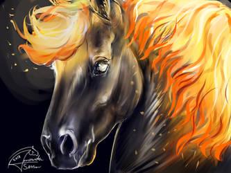 Fire by AmanndaSierra