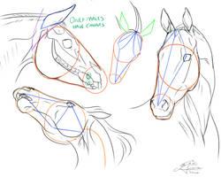 Tutorial Horses part 3 by AmanndaSierra
