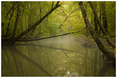 Sweetwater Creek 2 by x222943